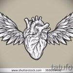 Крутой эскиз тату крылья – рисунок наколки крыло подойдет для крыло на руке тату фото