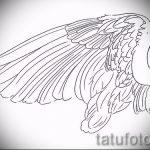 Необычный эскиз татуировки крылья – рисунок наколки крыло подойдет для крытые тату