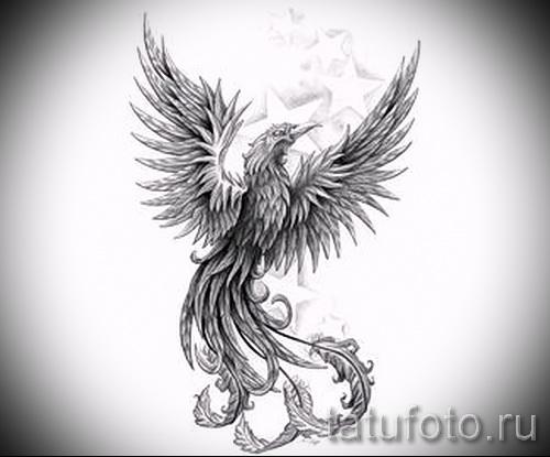 феникс птица картинки тату
