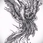 Интересный эскиз татуировки феникс – красивый рисунок для использования как эскиз для тату с огненной птицей
