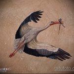 Уникальный вариант выполненной татуировки аист – рисунок подойдет для тату аист несет ребенка