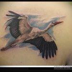 Оригинальный вариант существующей тату аист – рисунок подойдет для тату журавль и сакура
