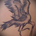 Классный вариант выполненной наколки аист – рисунок подойдет для тату аист марабу