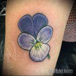 Оригинальный вариант нанесенной татуировки анютины глазки – рисунок подойдет для тату анютины глазки и бабочки