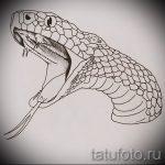 Достойный вариант татуировки эскиз змеи – можно использовать для тату змея и скорпион