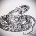 Интересный вариант татуировки эскиз змеи – можно использовать для тату змей шее