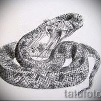 Эскизы тату змея