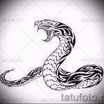 Классный вариант тату эскиз змеи – можно использовать для тату змея с цветами