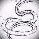 Классный вариант тату эскиз змеи – можно использовать для тату змея вокруг руки