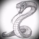 Интересный вариант татуировки эскиз змеи – можно использовать для голова змеи тату