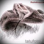 Прикольный вариант тату эскиз змеи – можно использовать для женские тату змея