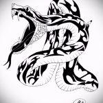 Прикольный вариант тату эскиз змеи – можно использовать для тату змеи мужчин