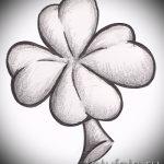Прикольный вариант тату эскизы клевер – можно использовать для тату ласточка с клевером