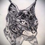 Стильный вариант тату эскиз рысь – можно использовать для тату рысь у девушки