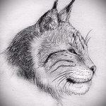 Достойный вариант тату эскиз рысь – можно использовать для тату рысь на спине