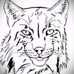 Классный вариант татуировки эскиз рысь – можно использовать для тату рысь на плече