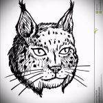 Стильный вариант тату эскиз рысь – можно использовать для рысь оскалом тату