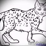 Классный вариант тату эскиз рысь – можно использовать для тату рысь на шее
