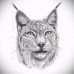 Прикольный вариант татуировки эскиз рысь – можно использовать для тату рысь на шее