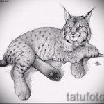 Интересный вариант тату эскиз рысь – можно использовать для тату рысь акварель