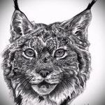 Интересный вариант тату эскиз рысь – можно использовать для тату рысь графика