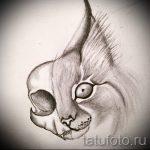 Интересный вариант татуировки эскиз рысь – можно использовать для тату рысь черная