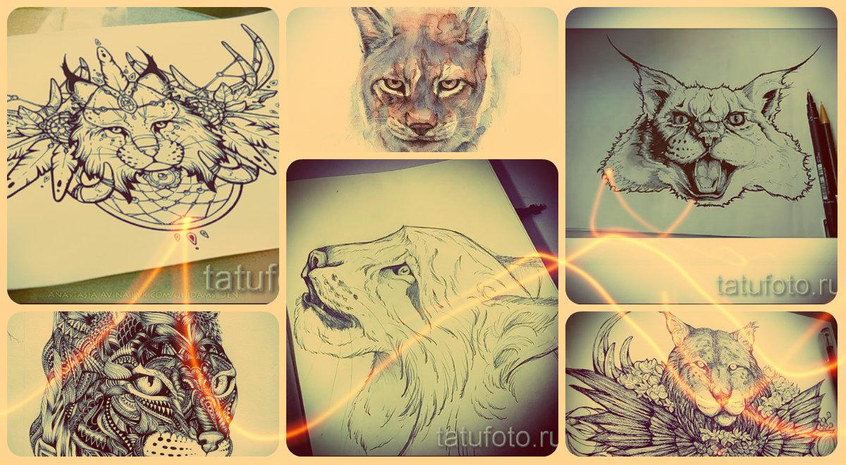 Эскизы тату рысь - лучшие варианты рисунков для того, чтоб сделать тату рысь