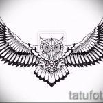 Достойный вариант тату эскиз филин – можно использовать для тату филин контуры