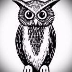 Классный вариант татуировки эскиз филин – можно использовать для тату филин олд скул