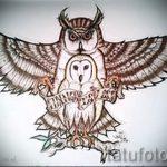 Классный вариант татуировки эскиз филин – можно использовать для тату филин на грудной клетке