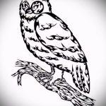 Прикольный вариант тату эскиз филин – можно использовать для тату филин ребенок