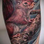 Зачетный вариант нанесенной татуировки белка – рисунок подойдет для тату белка в колесе
