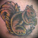 Зачетный пример готовой татуировки белка – рисунок подойдет для фото тату белка ездит в такси
