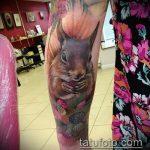 Зачетный вариант выполненной татуировки белка – рисунок подойдет для фото тату белка и стрелка
