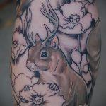 Оригинальный пример готовой татуировки белка – рисунок подойдет для фото тату белка ёж лягушка