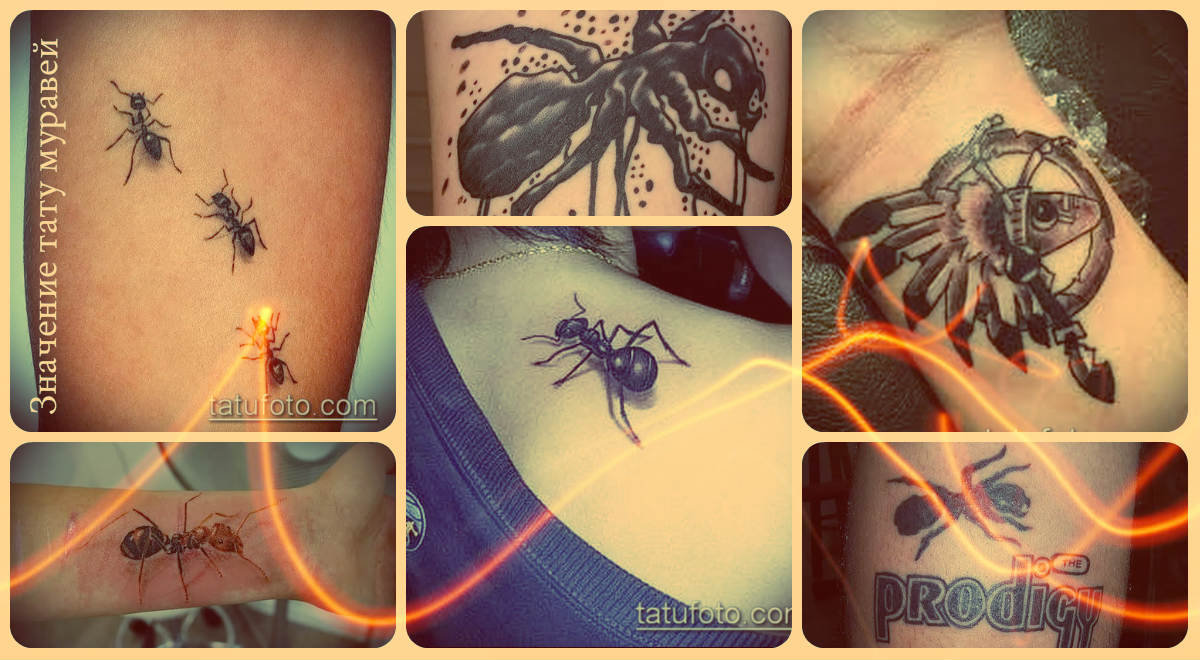 Значение тату муравей - примеры удачных тату на фото