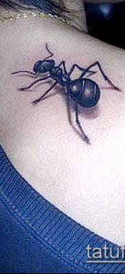 Фото тату муравей (значение) – пример интересного рисунка тату – 004 tatufoto.com