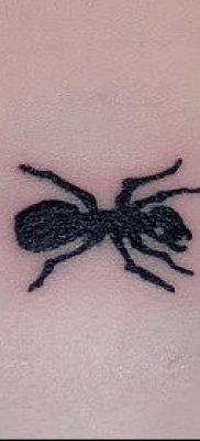 Фото тату муравей (значение) – пример интересного рисунка тату – 007 tatufoto.com