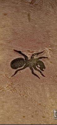 Фото тату муравей (значение) – пример интересного рисунка тату – 034 tatufoto.com