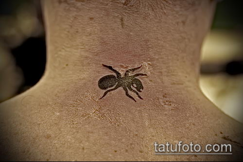 Фото тату муравей (значение) - пример интересного рисунка тату - 034 tatufoto.com