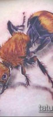 Фото тату муравей (значение) – пример интересного рисунка тату – 039 tatufoto.com
