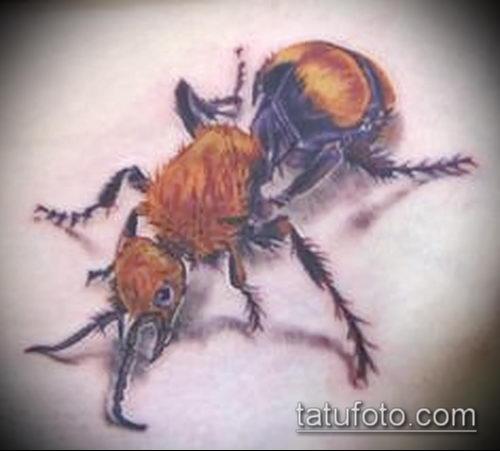 Фото тату муравей (значение) - пример интересного рисунка тату - 039 tatufoto.com