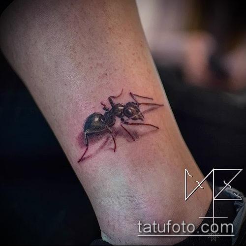 Фото тату муравей (значение) - пример интересного рисунка тату - 042 tatufoto.com