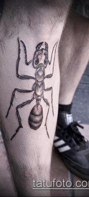 пример татуировки муравей на фото 1