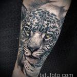 фото тату барс №605 - интересный вариант рисунка, который успешно можно использовать для преобразования и нанесения как тату барс снежный