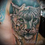 фото тату барс №755 - крутой вариант рисунка, который хорошо можно использовать для переработки и нанесения как тату барса на спине