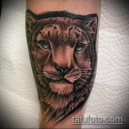фото тату барс №296 - классный вариант рисунка, который удачно можно использовать для переработки и нанесения как татуировка барс на спине