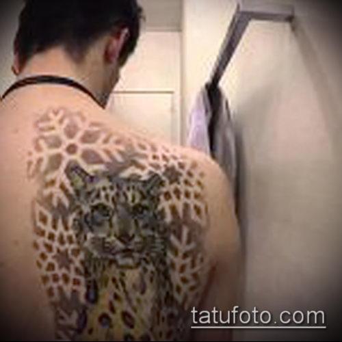 фото тату барс №887 - уникальный вариант рисунка, который успешно можно использовать для переработки и нанесения как тату барса на плече