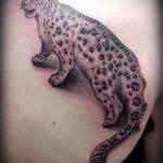 фото тату барс №223 - эксклюзивный вариант рисунка, который удачно можно использовать для переделки и нанесения как тату барса на плече