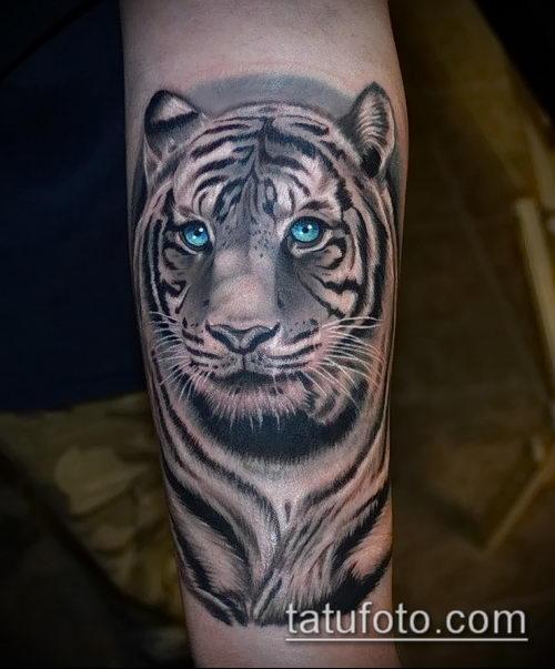 фото тату барс №790 - достойный вариант рисунка, который удачно можно использовать для переработки и нанесения как тату барс спецназ